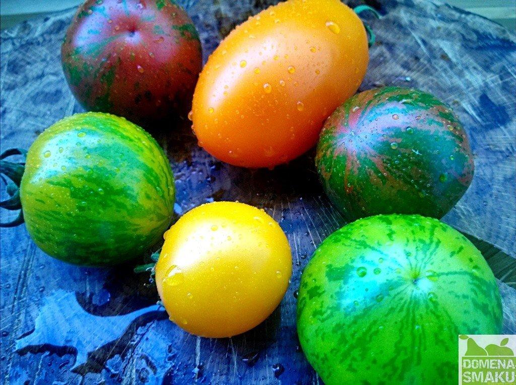 Salatka pomidorowa z czarna sola 1