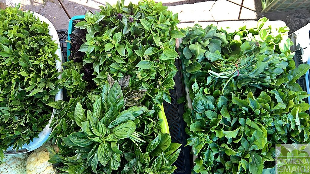 warzywa zielonka dionizy 5
